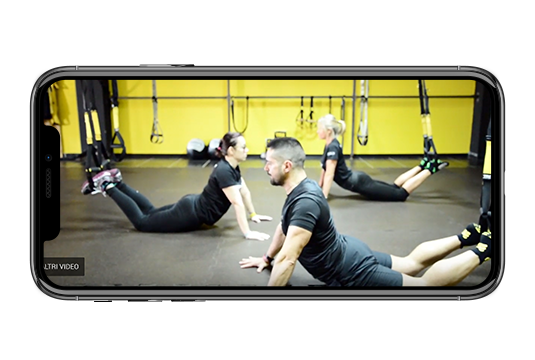 TRX Corso Suspension Yoga
